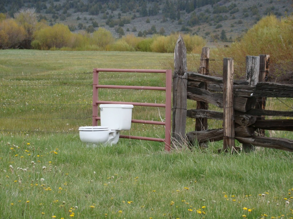 toilet in field
