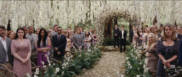 How Much Did Edward And Bella S Wedding Cost Centives